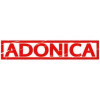 Adonica