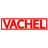 Vachel